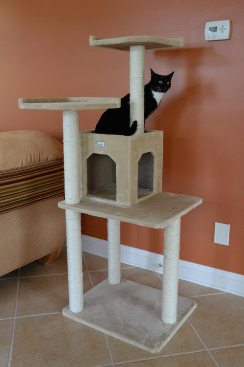 Gleepet Cat Tree