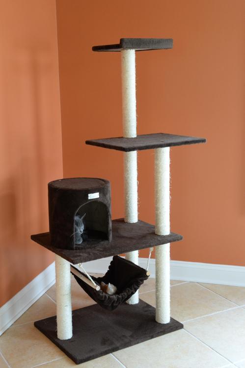 Gleepet Cat Tree With Hammack