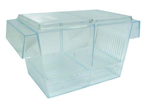 H003 Brand New Fish hatchery Tank Size 8L?x4W?x4H?