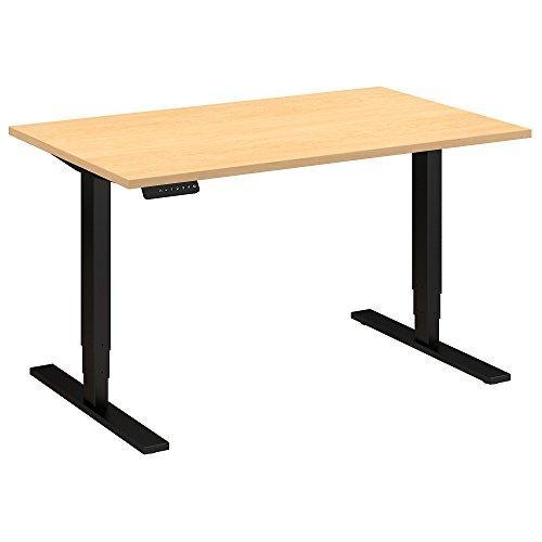 48W x 30D Height Adjustable Standing Desk
