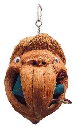Coco Parrot Head