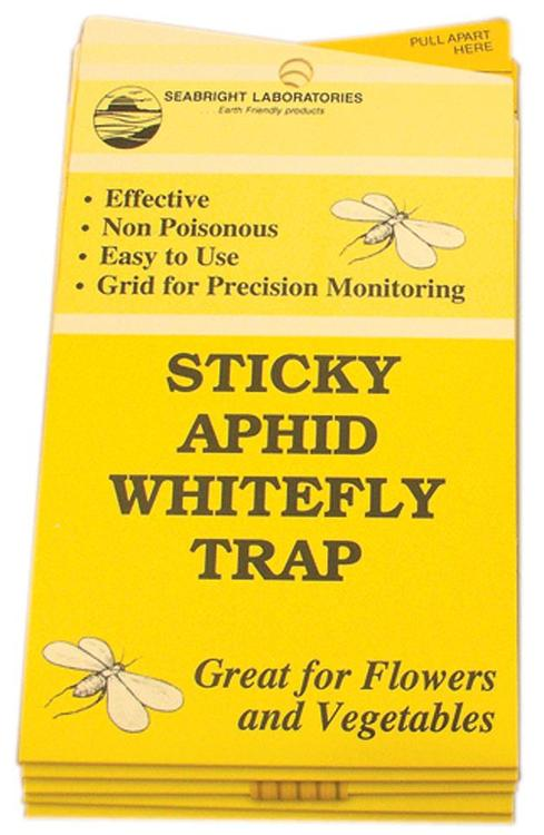 Hgslwft White Fly Trap 5Pk