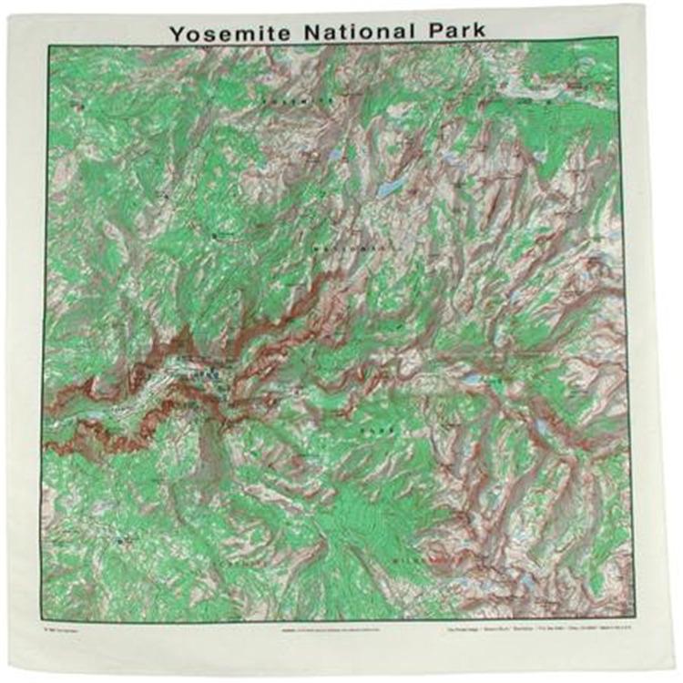 Topographic Map Bandana
