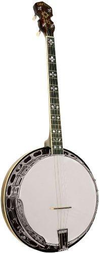 TS-250 Professional 4-String Tenor Banjo
