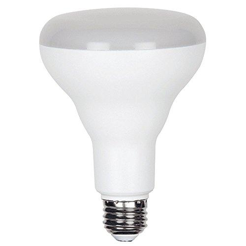 BR30 LED Lamps
