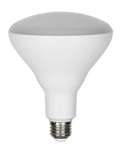 LED BR40 Recessed Can/Spot and Track Light Bulb