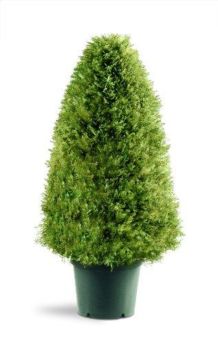 National Tree Artificial Upright Juniper in Green Pot