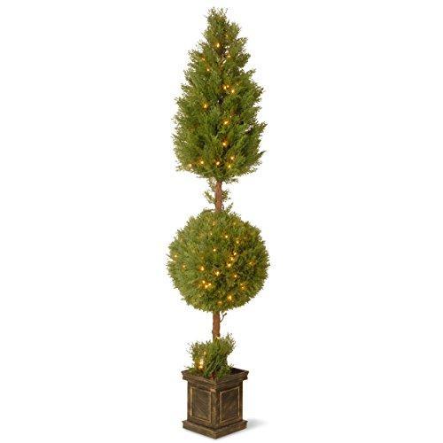 National Tree 72