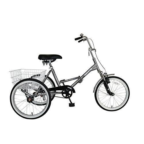Tri-Rad 20 Silver Adult Folding Tricycle