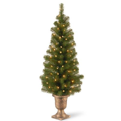 Montclair Spruce Entrance Tree with Clear Lights