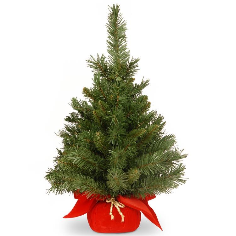 National Tree 24 inch Majestic Fir Tree [Item # MJ3-24RD-1]