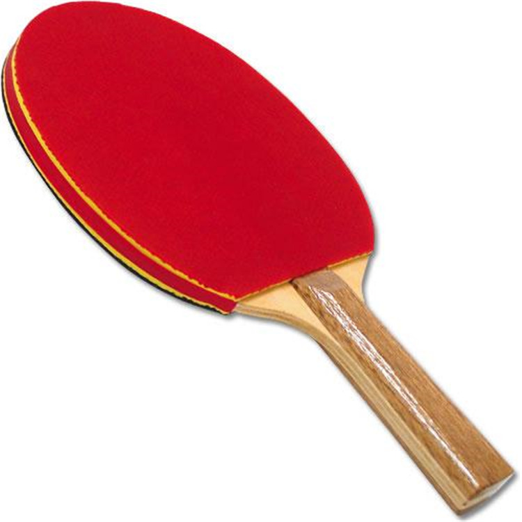BSN Sports Deluxe Sponge Rubber Paddle [Item # NAF2XXXX]