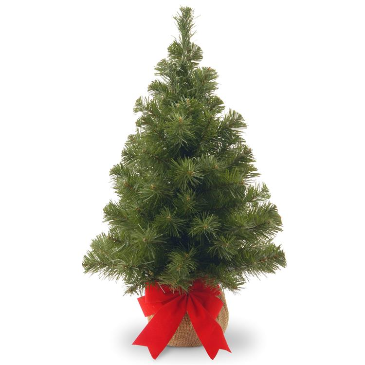 National Tree 2 ft Noble Spruce Tree [Item # NB1-20BP-1]