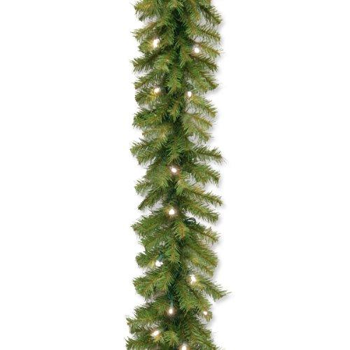 National Tree Norwood Fir Garland with Warm White LED Lights