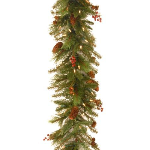 National Tree Noelle Garland with Battery Operated Warm White LED Lights