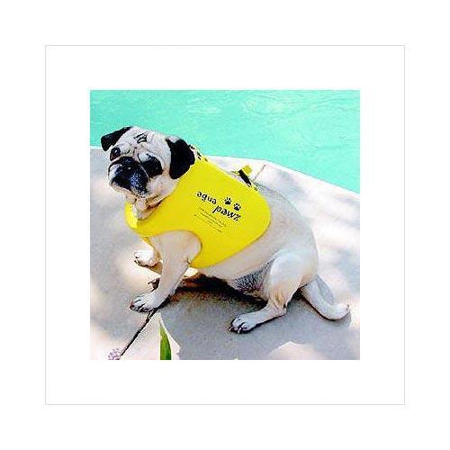 Aqua Paws Dog Life Jacket