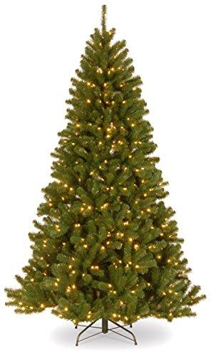 North Valley Spruce Tree with Clear Lights