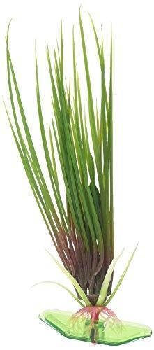 7? Hair Grass