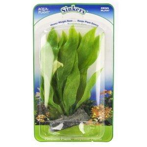 Amazon Sword Plant - Large / Sinkers Bushy Plant