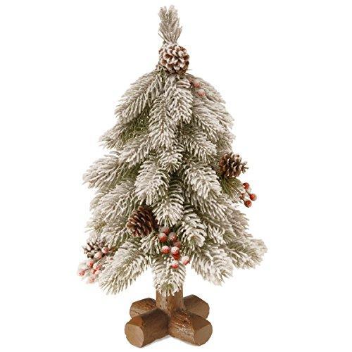 National Tree Snowy Bayberry Cedar Tree