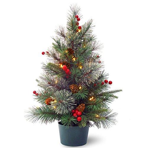 National Tree Colonial Potted Tree with Battery Operated Warm White LED Lights [Item # PECO1-300-20-B1]