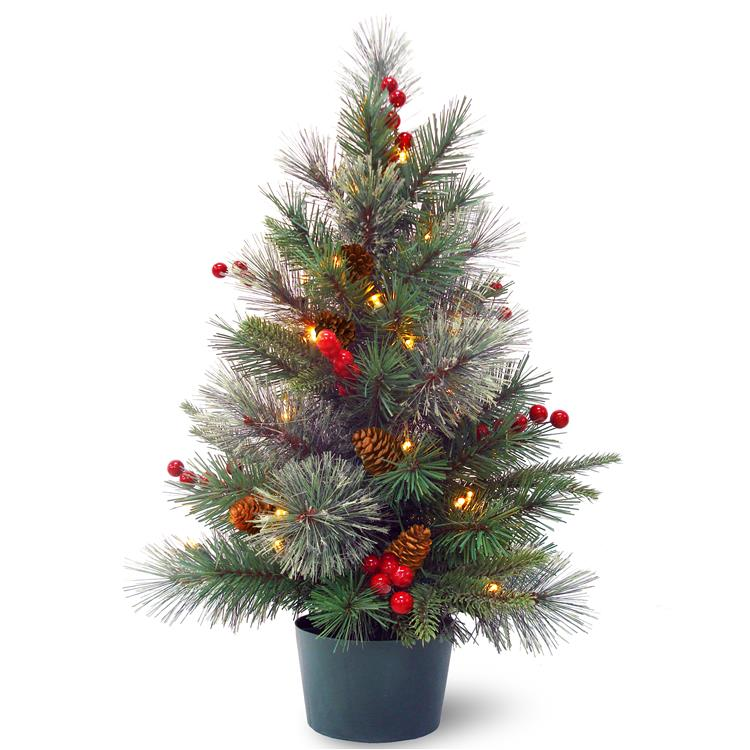 National Tree 2 ft Colonial Potted Tree with Battery Operated Warm White LED Lights [Item # PECO1-300-20-B1]