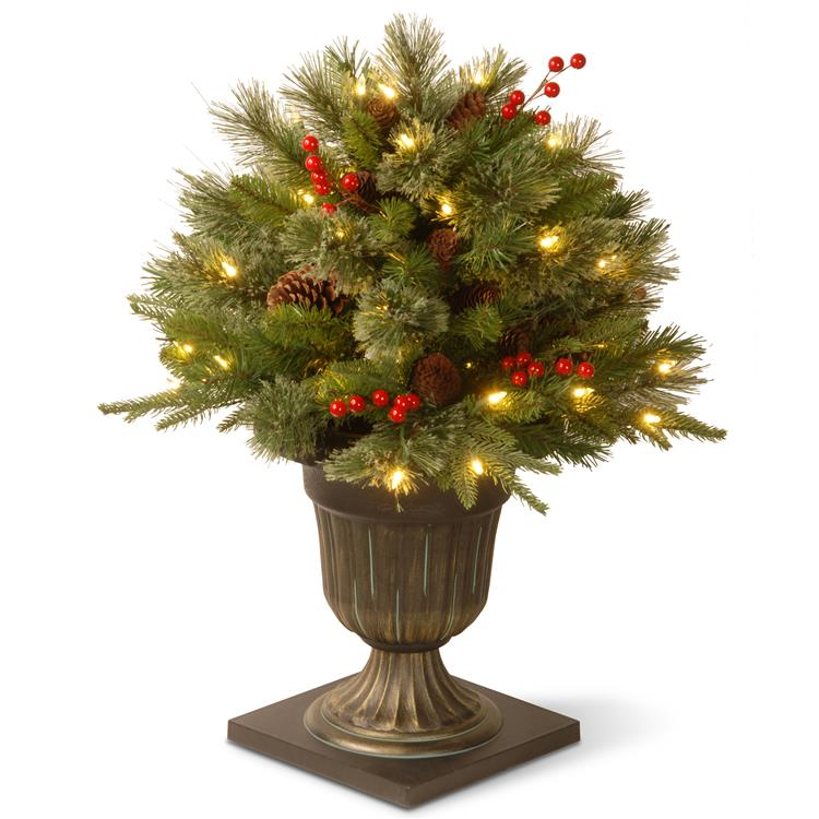 National Tree 24 inch Colonial Porch Bush with Clear Lights