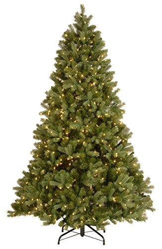 National Tree Downswept Douglas Fir Tree with 750 Dual Color LED Lights with PowerConnect 9 Function System