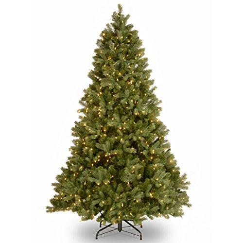 National Tree PowerConnect Downswept Douglas Fir Tree with Clear Lights