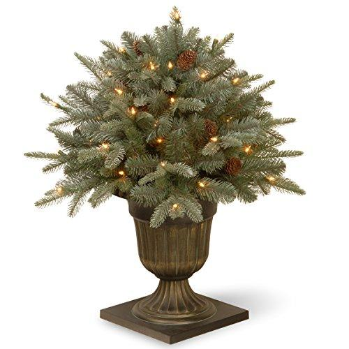 Frosted Arctic Spruce Porch Bush with Clear Lights