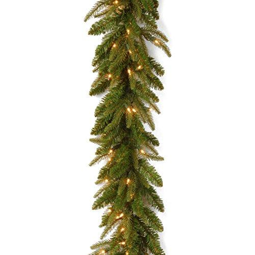 National Tree Frasier Grande Garland with Clear Lights