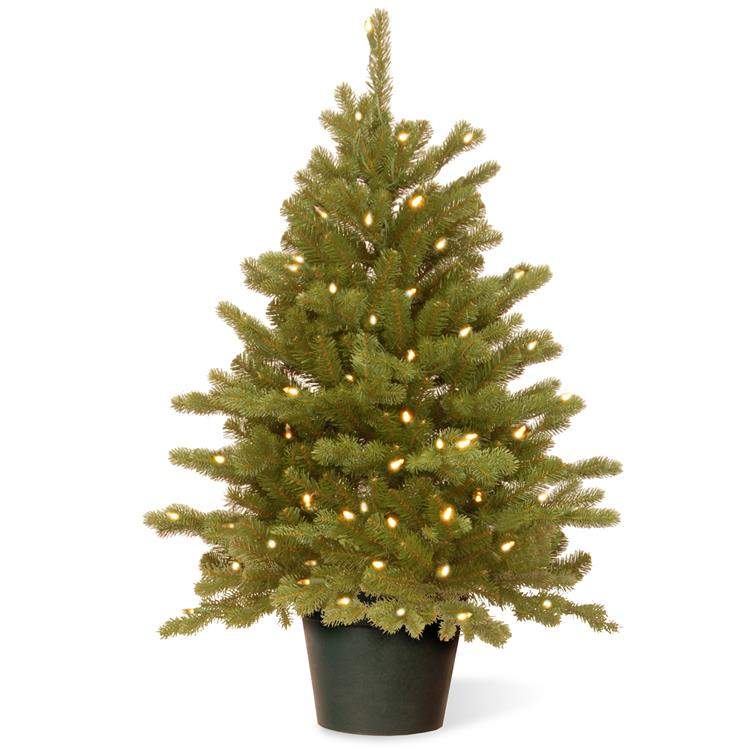 National Tree 3 ft Hampton Spruce Tree with Clear Lights