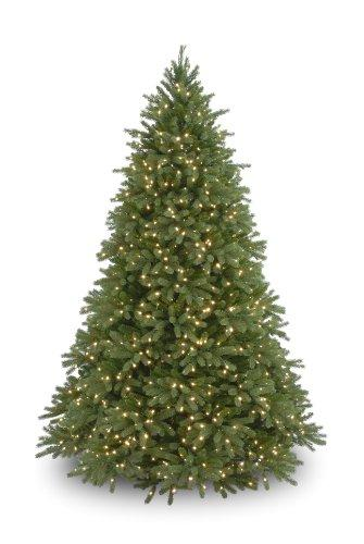 National Tree Jersey Fraser Fir Tree with Lights [Item # PEJF1-300-75]