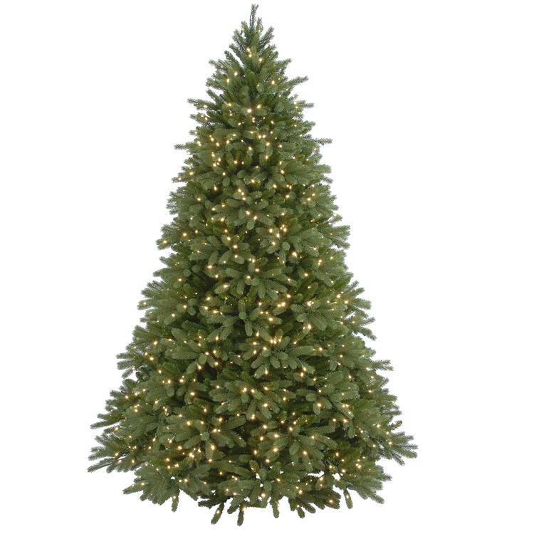 National Tree Jersey Fraser Fir Tree with Clear Lights