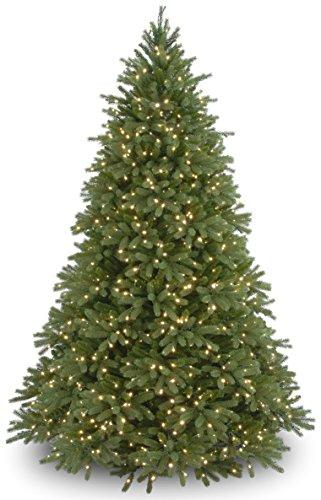 Jersey Fraser Fir Tree with Clear Lights