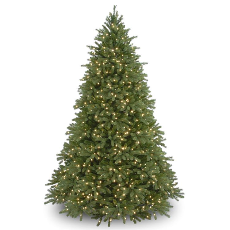 National Tree Jersey Fraser Fir Tree with Clear Lights [Item # PEJF1-300-90]