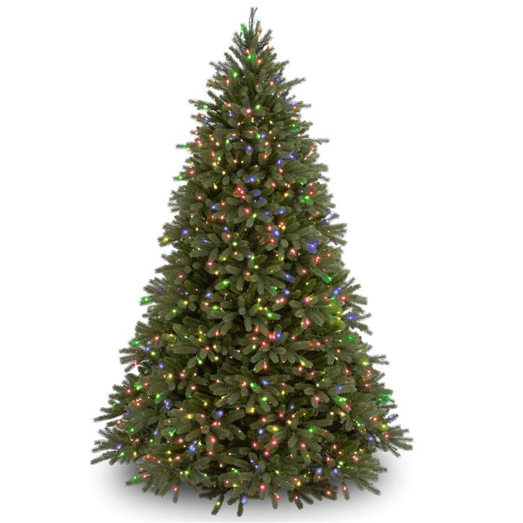 National Tree Jersey Fraser Fir Tree with Multicolor Lights [Item # PEJF1-301-75]