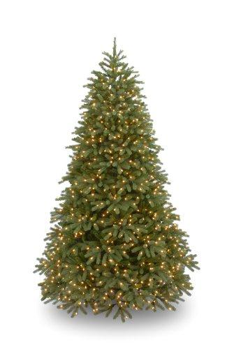 National Tree Jersey Fraser Fir Medium Tree with Clear Lights