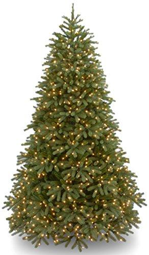 National Tree Jersey Fraser Fir Medium Tree with Dual Color LED Lights
