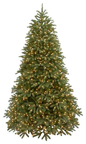 Jersey Fraser Fir Medium Tree with Dual Color LED Lights