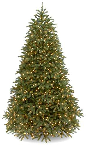 National Tree Jersey Fraser Fir Medium Tree with Warm White LED Lights