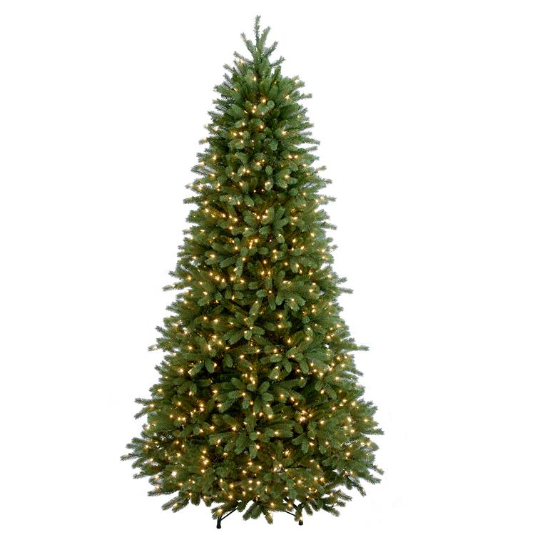 National Tree Jersey Fraser Fir Slim Tree with Clear Lights [Item # PEJF1-304-75]
