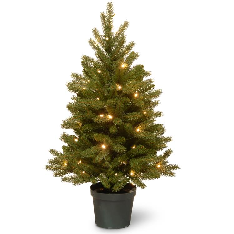 National Tree 3 ft Jersey Fraser Fir Tree with Battery Operated Warm White LED Lights