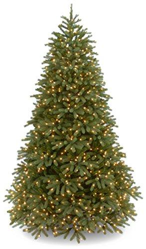 National Tree PowerConnect Jersey Fraser Fir Medium with Dual Color LED Lights