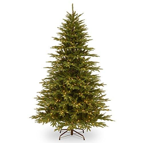 National Tree Monterey Fir Tree with Clear Lights