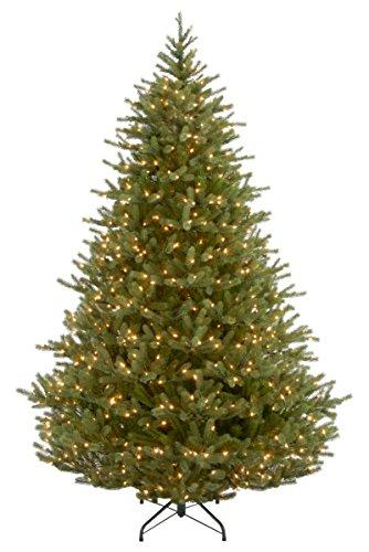 National Tree Noble Fir Tree with Clear Lights