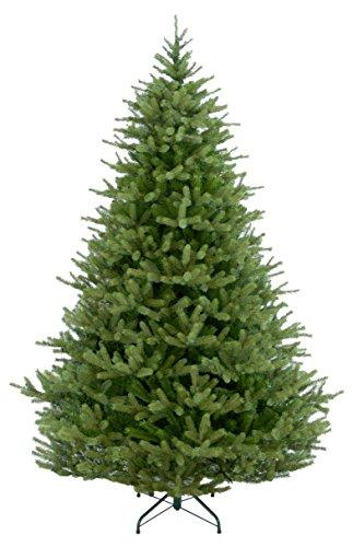 National Tree Norway Fir Tree [Item # PENF1-500-65]