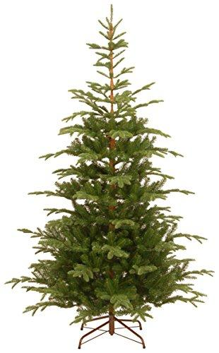 National Tree Norwegian Spruce Tree [Item # PENG4-500-75]