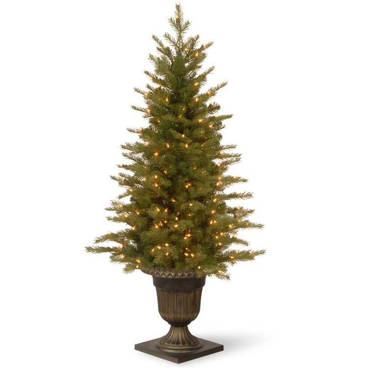 National Tree 4 ft Nordic Spruce(R) Entrance Tree with Clear Lights [Item # PENS1-306-40]