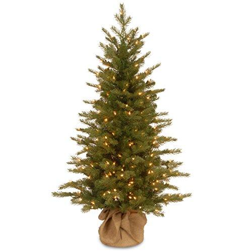 National Tree 2' Nordic Spruce Tree with 50 Clear Lights in Burlap Base